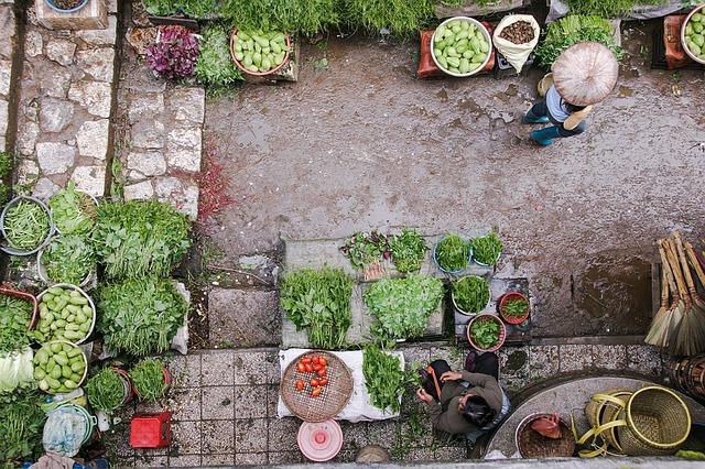 Trh so zeleninou.jpg