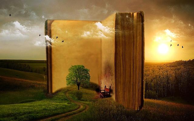 kniha, les, pole.jpg